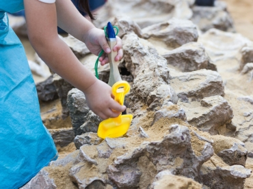 Children's Fossil and Dinosaur Dig